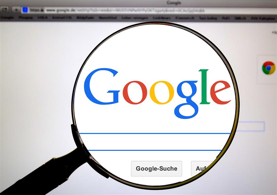 google search bert